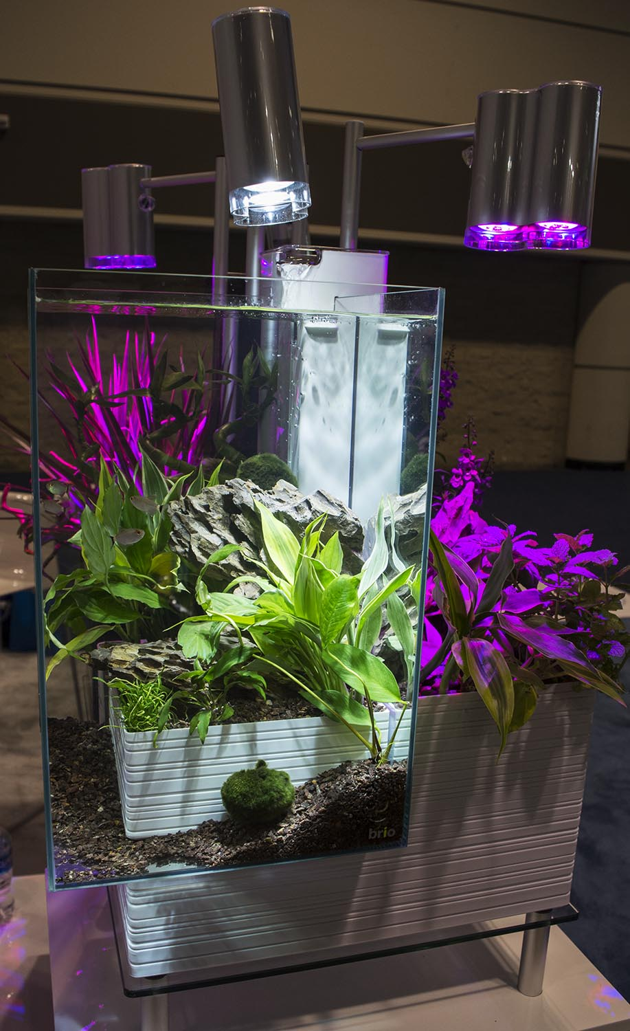 Aquaponics continues to make its crossover into the aquarium hobby, and the new Brio kit seems like a well-designed, functional, and stylish entry-level setup.