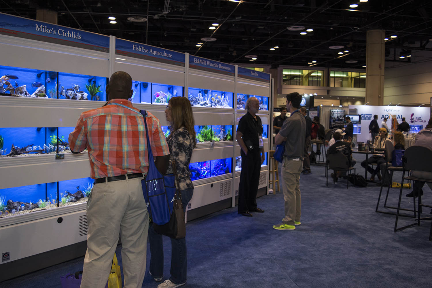 The scene from Global Pet Expo's Aquatic Lounge, where live fish vendors display their best livestock.