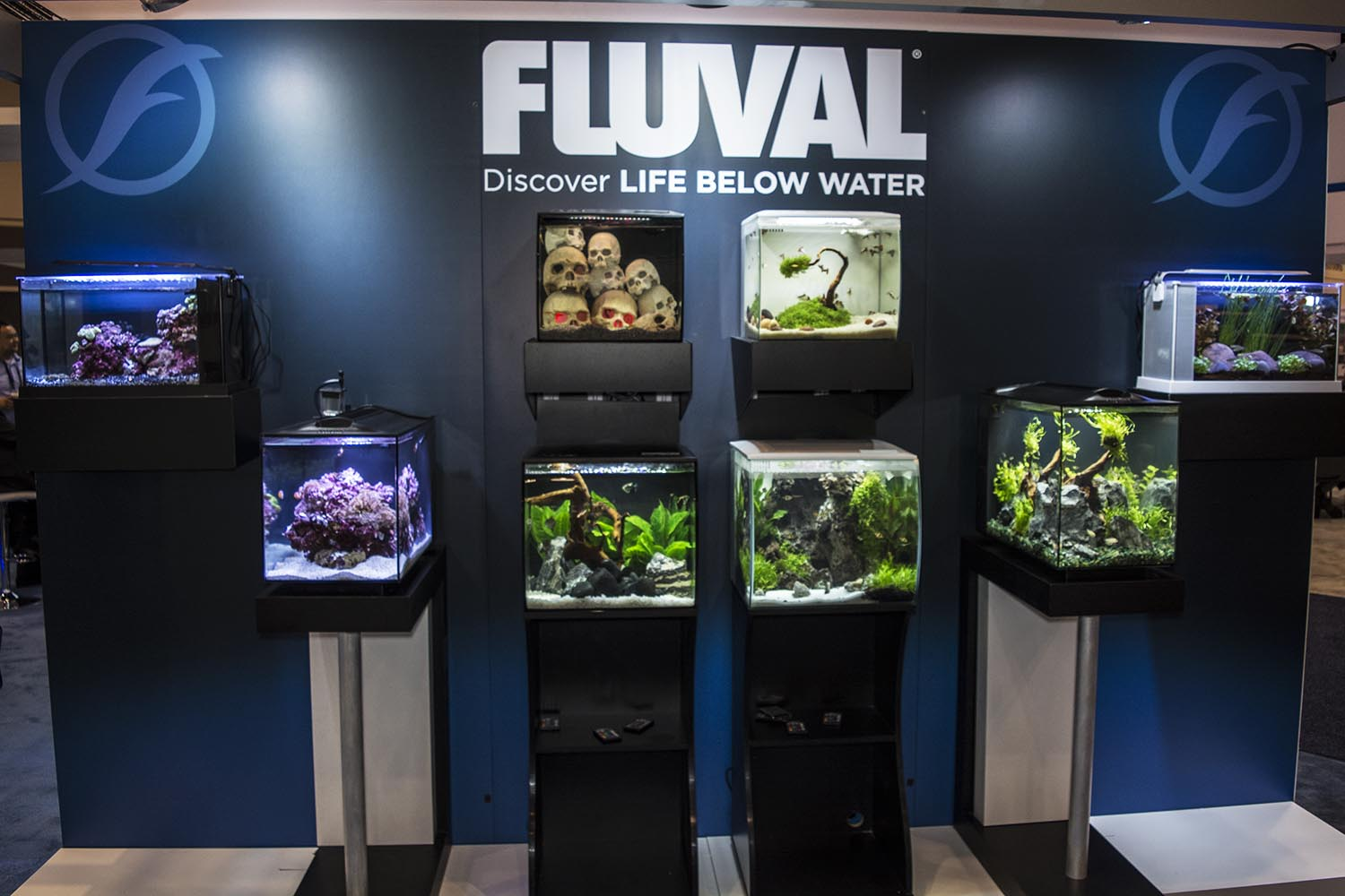 A great looking nano aquarium display from Fluval Aquatics, highlighting their new Flex line and a taller, 16-gallon Evo