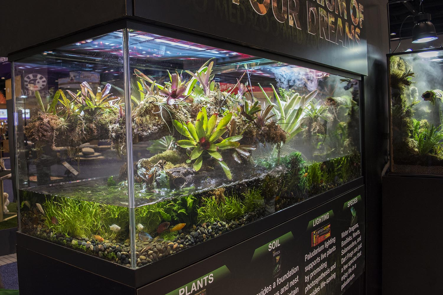 The Zoo Med booth, although more focused on the reptile and amphibian hobby, featured a large and beautifully designed paludarium housing both fish and reptiles