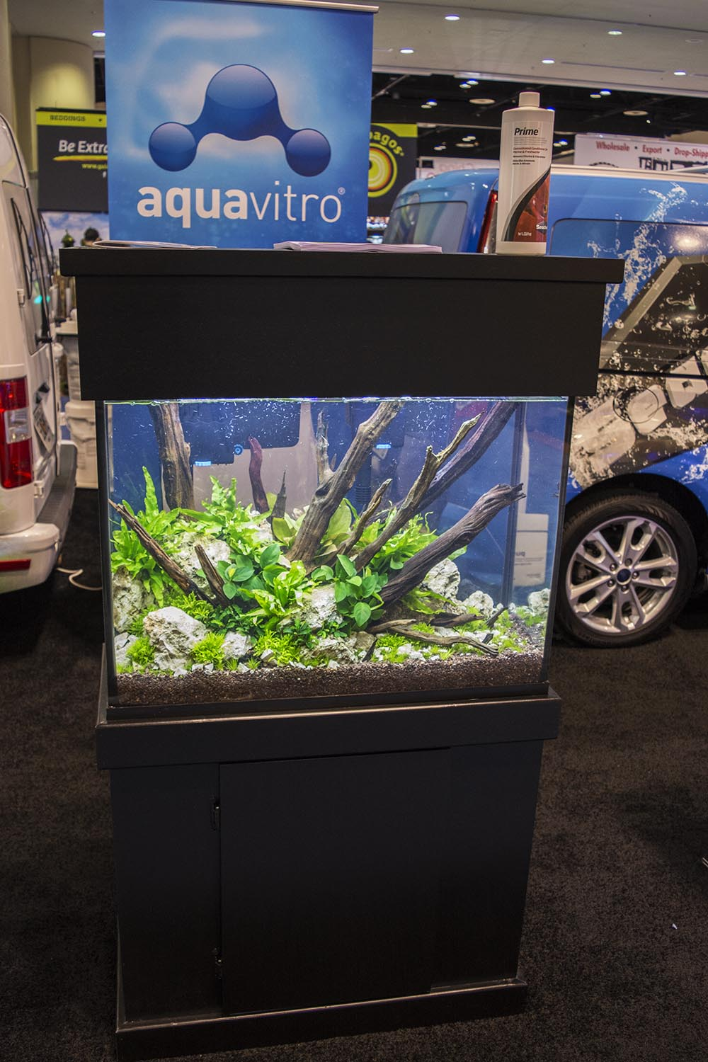 Seachem Laboratories announced some big additions to their freshwater, planted-tank-focused Aquavitro line which will now include live tissue cultured plants