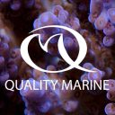 Quality Marine