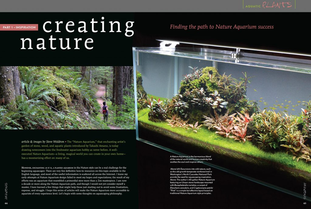 The new aquascaping series from AMAZONAS Magazine starts in the May/June 2017 issue.
