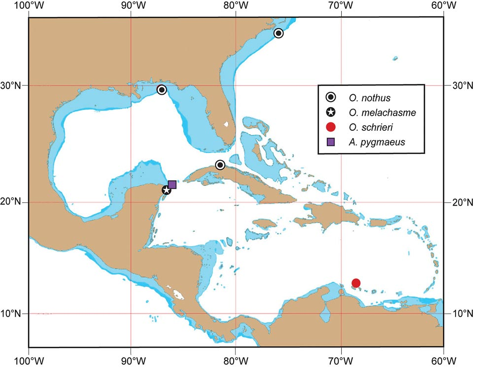 Distributions of selected deep-water Caribbean jawfishes; base map by Robert F. Myers, Coral Graphics, used with permission.