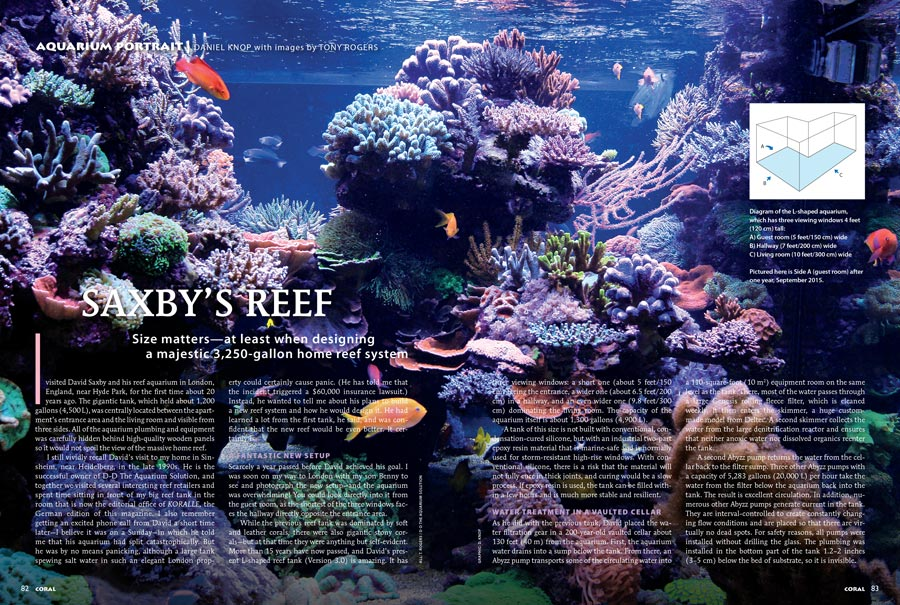 Size matters—at least when designing a majestic 3,250-gallon home reef system. Visit Saxby's Reef, the May/June 2017 Aquarium Portrait.