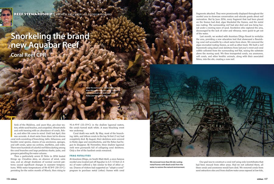 In the wake of a devastating bleaching event, with shallow-water Acropora now a rarity, Coral Reef CPR continues reef rebuilding in the Maldives. Learn more about snorkeling the brand new Aquabar Reef in the latest issue of CORAL.