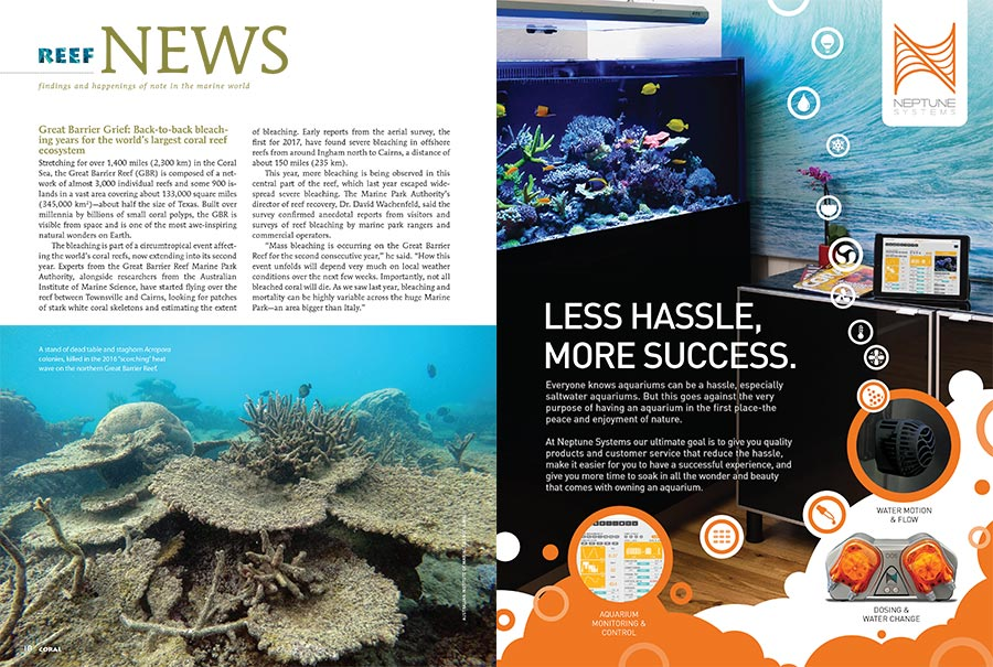 Great Barrier Grief: Back-to-back bleaching years for the world's largest coral reef ecosystem. Learn more in the new issue.