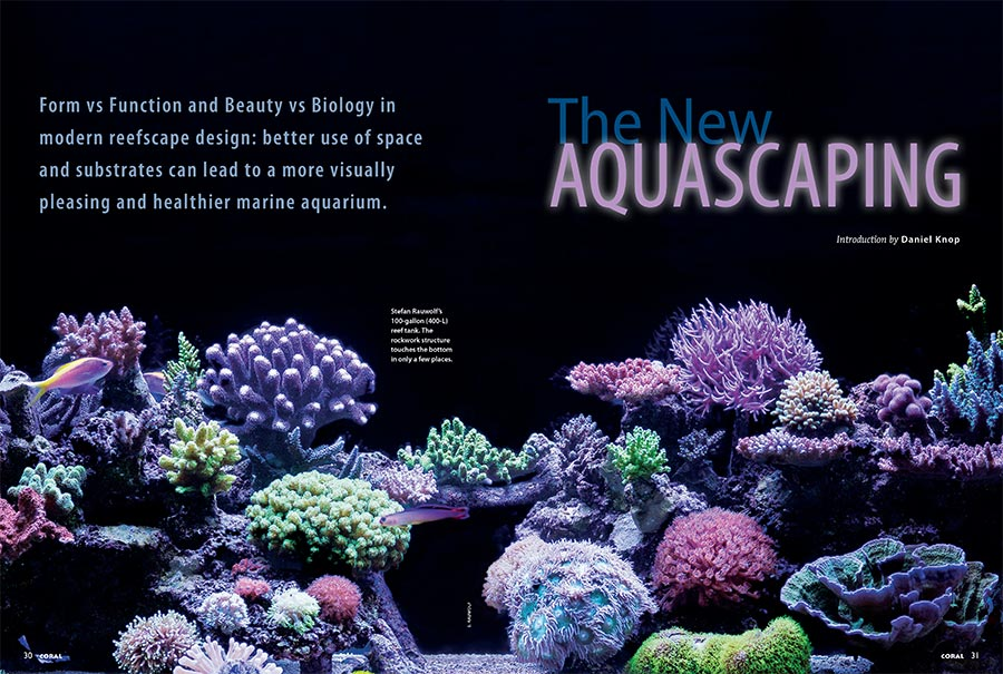 Form vs Function and Beauty vs Biology in modern reefscape design: better use of space and substrates can lead to a more visually pleasing and healthier marine aquarium. CORAL International Editor Daniel Knop introduces our cover feature series.