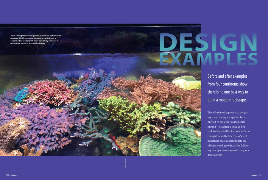Dive into our special report, DESIGN EXAMPLES: Before and after examples from four continents show there is no one best way to build a modern reefscape. Exclusively in the May/June 2017 issue of CORAL Magazine.