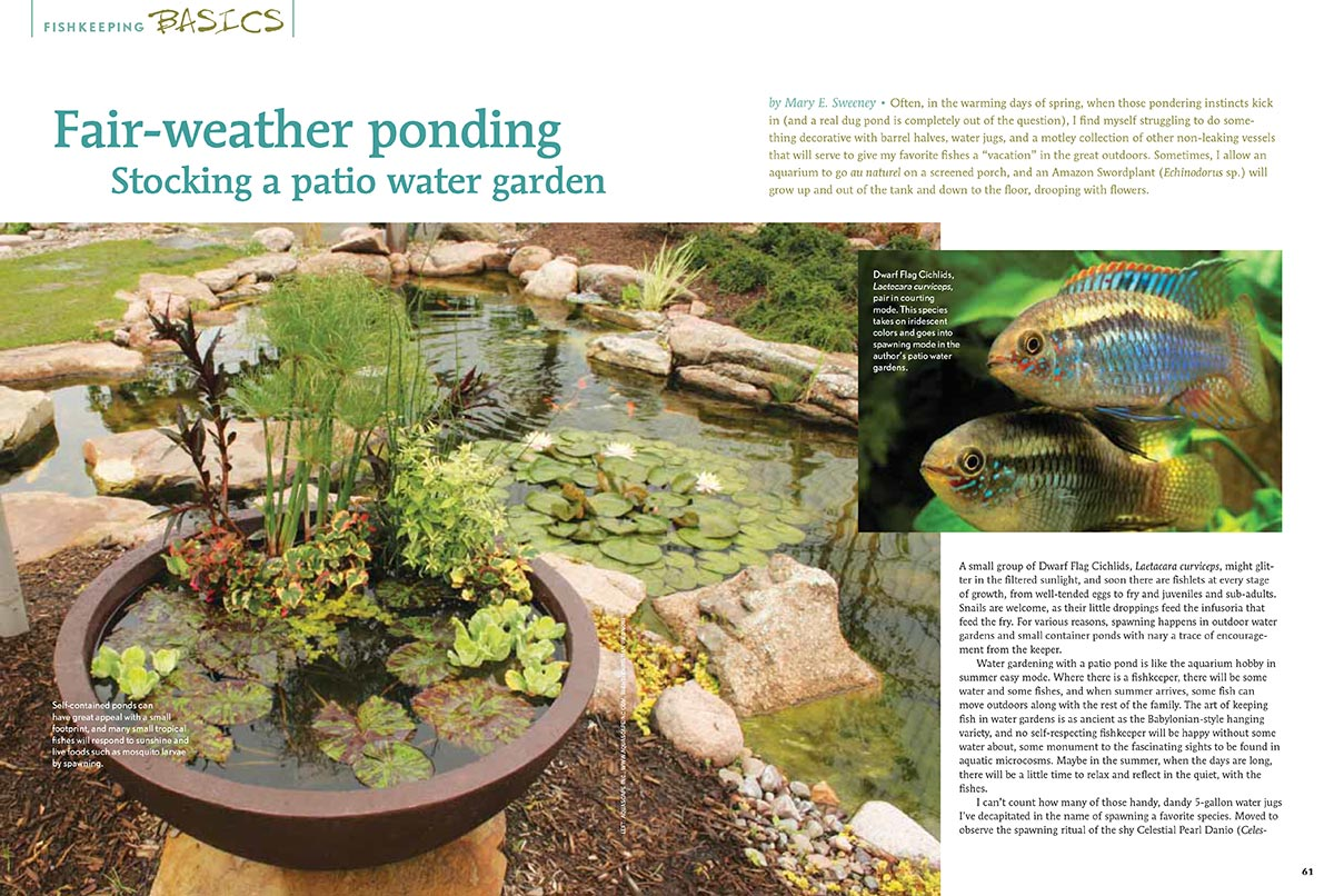 Fair Weather Ponding By Mary Sweeney, As Originally Published In The  May/June 2012