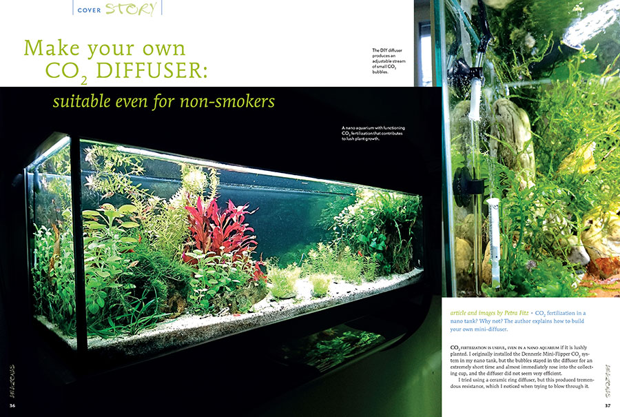 CO2 fertilization in a nano tank? Why not? Petra Fitz explains how to build your own mini-diffuser..