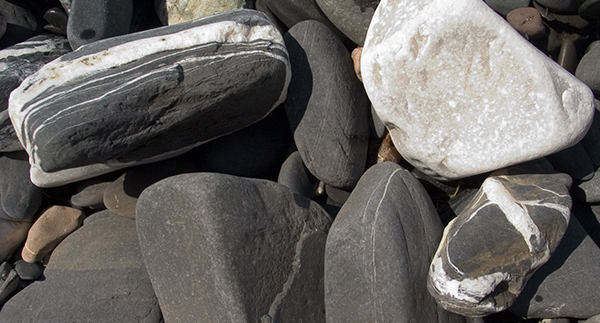 Distinctive local shore stones from Lake Champlain in Reef to Rainforest's hometown of Shelburne, Vermont.