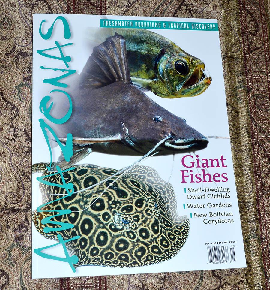 """AMAZONAS Magazine, """"Giant Fishes"""" - July/August 2014"""