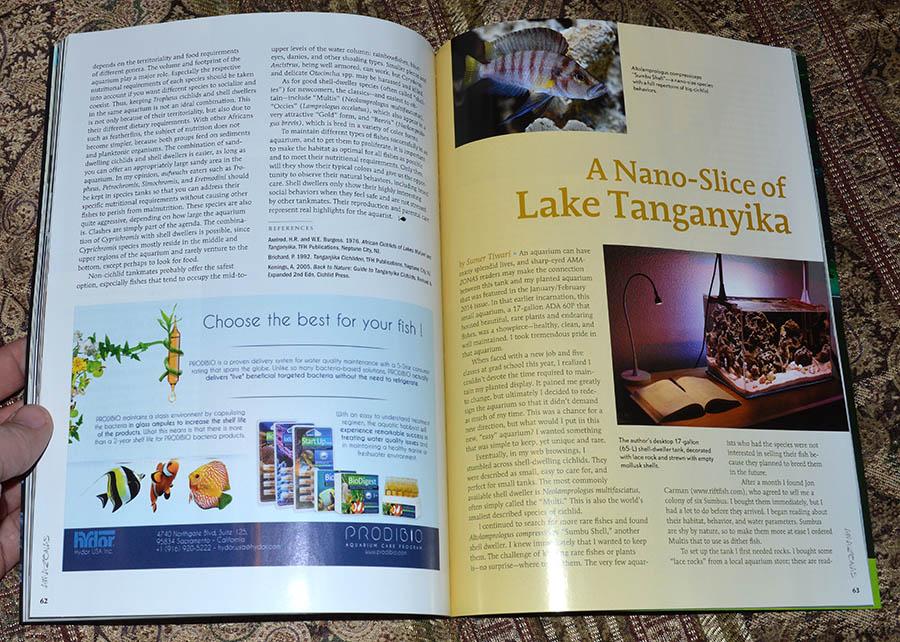 A Nano-Slice of Lake Tanganyika - by Sumer Tiwari