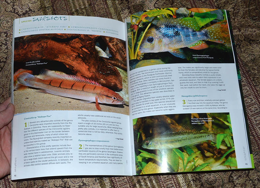 Species SNAPSHOTS for July/August 2014
