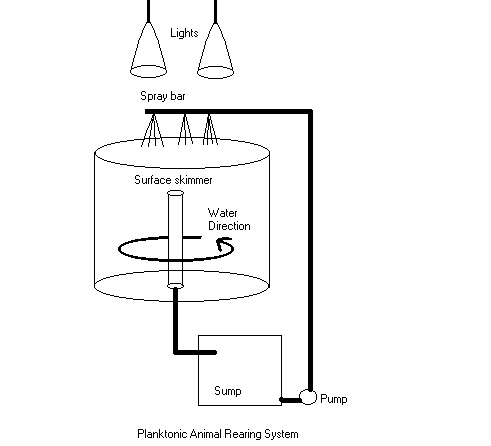 Diagram for a larval fish rearing system.