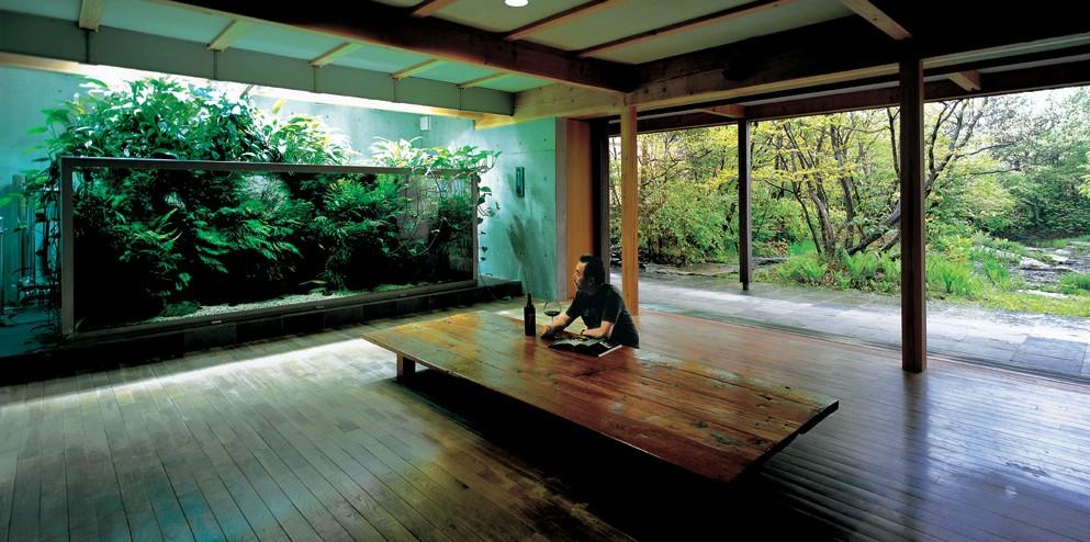 The Passing Of Aquascaping Legend Takashi Amano