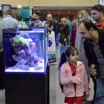 Marine Aquariums were well represented at The Aquatic Experience - Chicago. Image by CORAL / AMAZONAS Sr. Editor Matt Pedersen