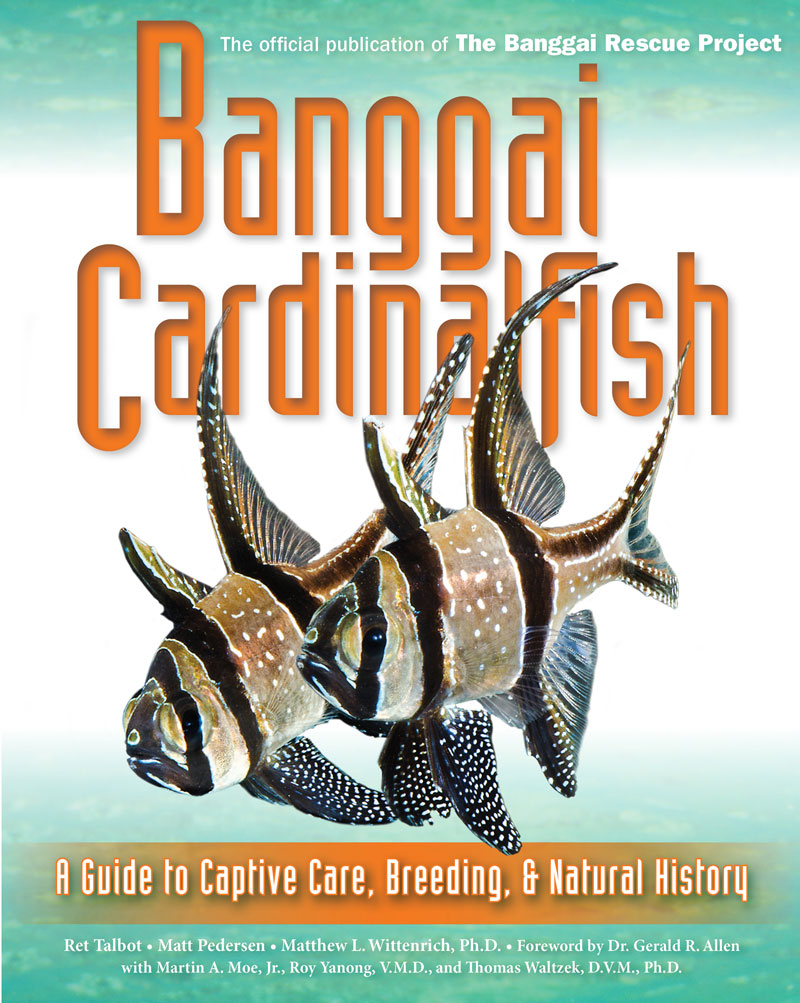 Banggai Cardinalfish, the book from Ret Talbot, Matt Pedersen and Dr. Matthew L. Wittenrich, investigating the past, present and future of this iconic and troubled aquarium fish.