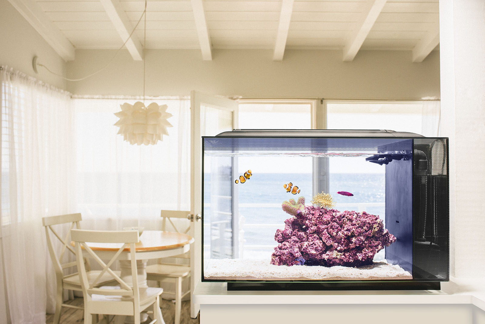 The Biota Aquarium Concept - All in one aquarium, pre-selected livestock, and a recipe for success.