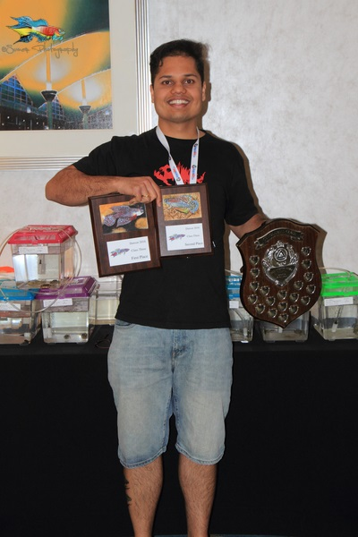 Yours truly with the awards won at the American Killifish Association 2016 Convention.