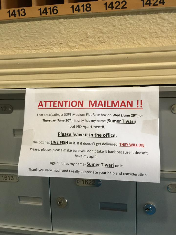 ATTENTION MAILMAN!