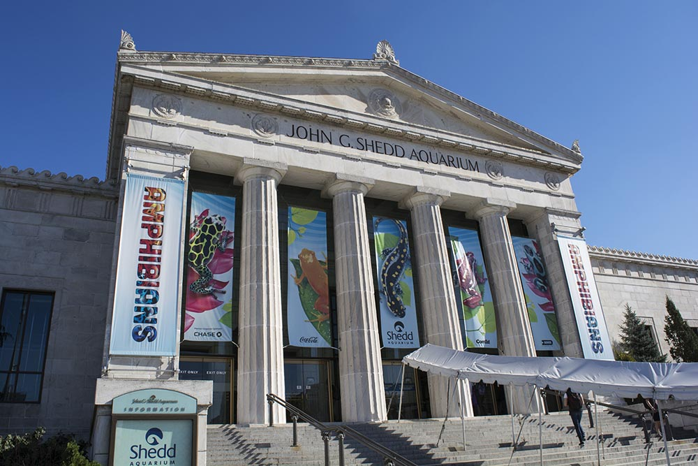 Shedd Aquarium, built in 1930, retains much of its original architecture and layout