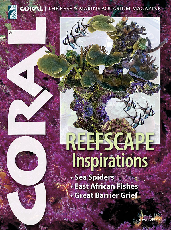 The cover of CORAL Magazine Volume 14, Issue 3 – REEFSCAPE INSPIRATIONS – May/June 2017
