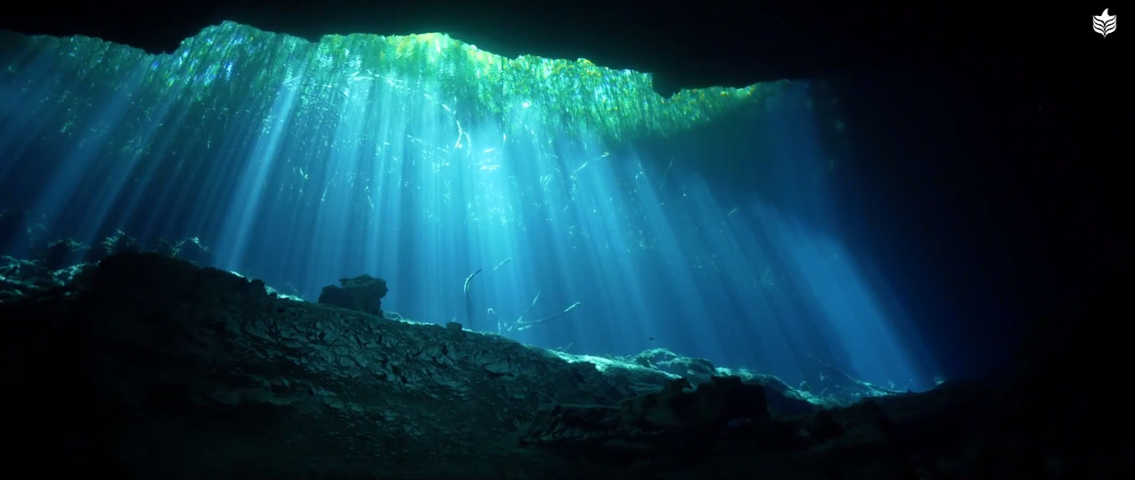 Simply gorgeous; rays of light cut through the water's surface streaming into the dark recesses of the cenote.