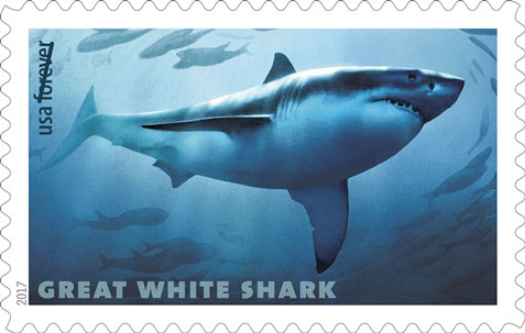 Great White Shark (Carcharodon carcharias), USPS Stamp