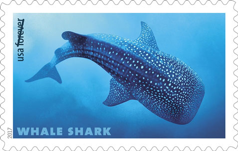Whale Shark (Rhincodon typus), USPS Stamp