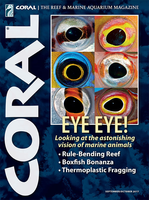 The cover of CORAL Magazine Volume 14, Issue 5 – EYE EYE! – September/October 2017