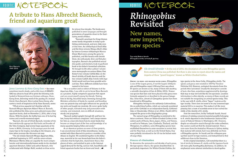 A remembrance of the life of Hans Albrecht Baensch, and an update to Rhinogobius, are two of the stories leading of the Aquatic Notebook.