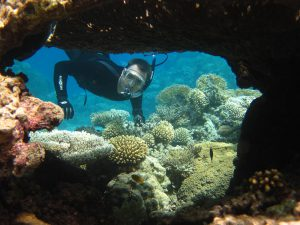 Graduate MASNA scholarship recipient, Ben, snorkeling on coral reef.