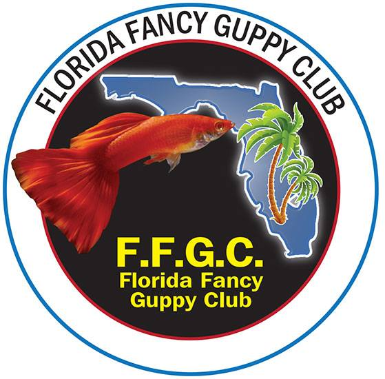 Florida Fancy Guppy Club