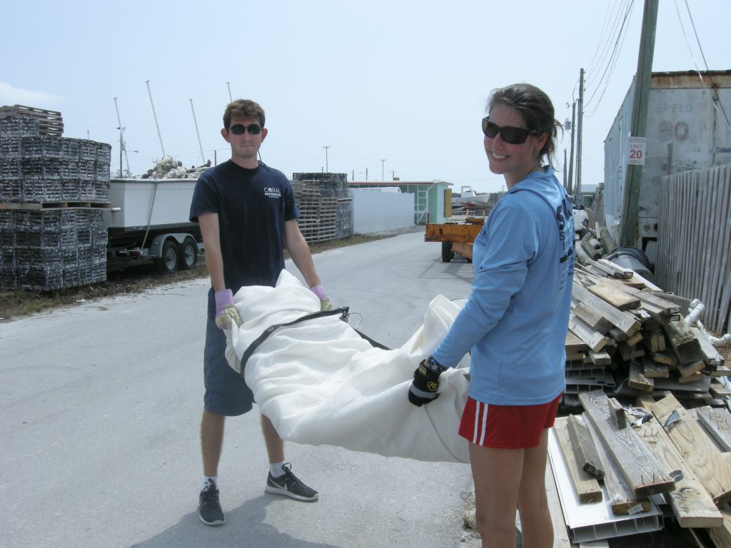 Coral Restoration Foundation staff members Dan and Martha assisting in the cleanup efforts at the A&M Aquatics coral farm.