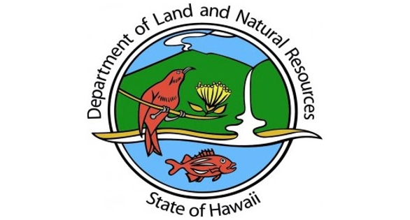Hawaii suspends issuance of aquarium collection permits for Hawaii fishing license