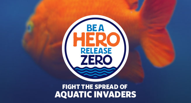 Be a hero, release zero. Fight the spread of aquatic invaders.