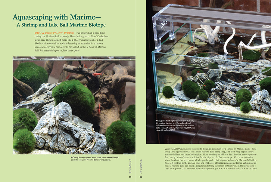 """When AMAZONAS Magazine asked me to design an aquarium for a feature on Marimo Balls, I have to say I was apprehensive; I rarely think of them as suitable for the high art of a fine aquascape. After some consideration, I realized I've been wrong all along."" See Steve Waldron's inspired creation in the latest issue."