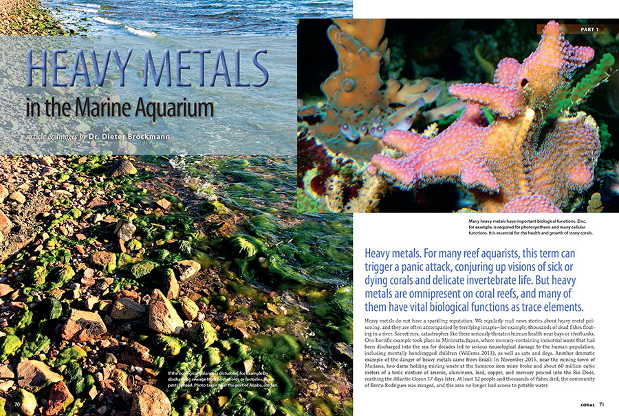 """Heavy metals,"" writes Dr. Dieter Brockmann. ""For many reef aquarists, this term can trigger a panic attack, conjuring up visions of sick or dying corals and delicate invertebrate life. But heavy metals are omnipresent on coral reefs, and many of them have vital biological functions as trace elements."""