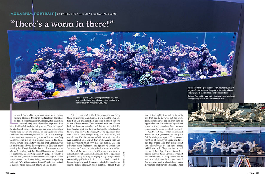 For this issue's Aquarium Portrait, we revisit the home of Lisa and Sebastian Blume, first featured in the Nov/Dec 2015 issue of CORAL, who've upgraded to a 555 gallon reef aquarium.