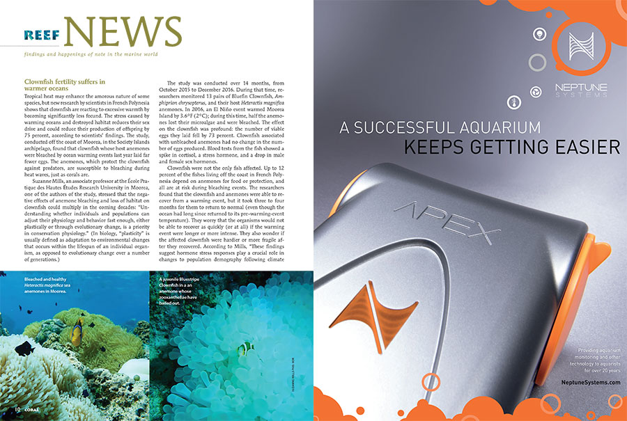The latest installment of our Reef News column covers wide-ranging topics, including the effect of warming oceans on clownfish fertility, a surprising change in polar reef life in response to minor temperature shifts, Sea & Reef Aquaculture's newest introduction (The Black Storm Clownfish), and Hawaii's court-mandated closure of the aquarium fishery.