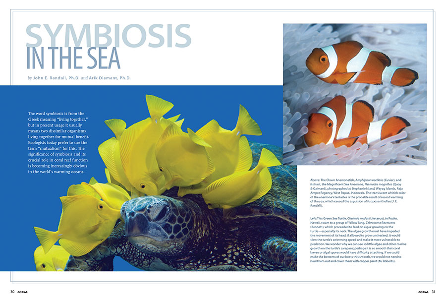 "Drs. Jack Randall and Arik Diamant examine the need for reef conservation through an exclusive-to-CORAL adapted version of their recent paper, ""Examples of symbiosis in tropical marine fishes."""