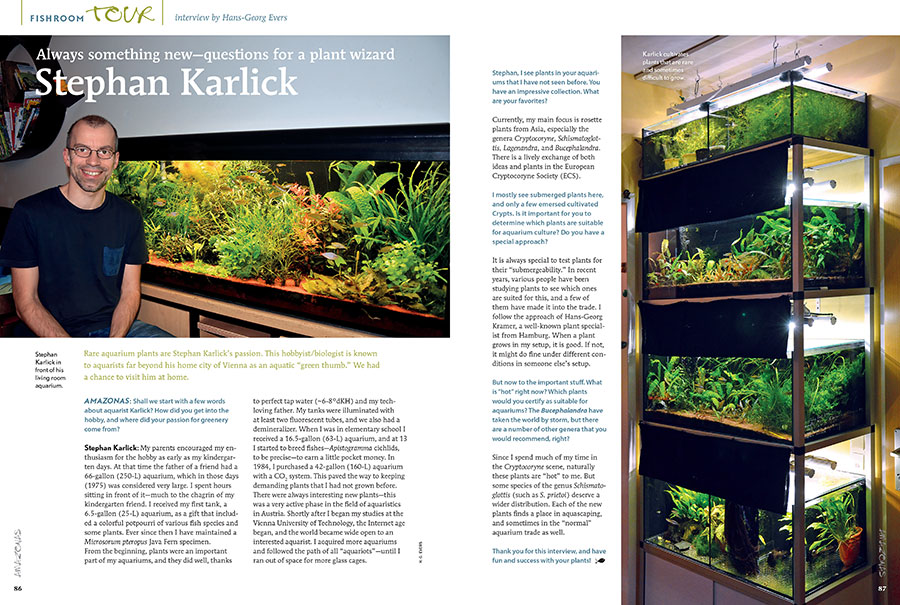Aquatic Interview: Rare aquarium plants are Stephan Karlick's passion. We had a chance to visit him at home.
