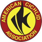 The American Cichlid Association can be found online at www.cichlid.org.