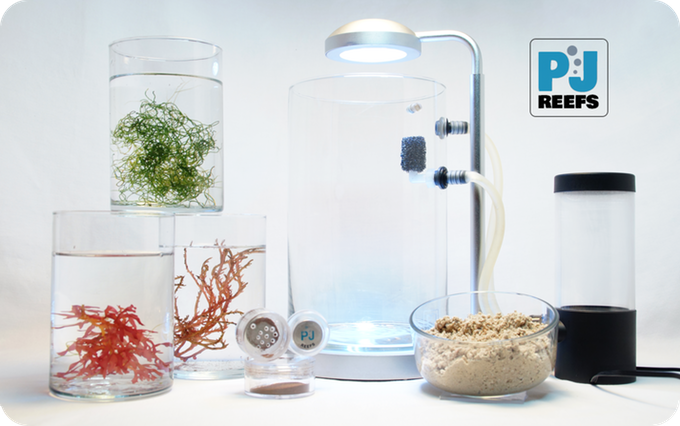 The PJ Reefs 2.0 Deluxe Mini Seahorse Aquarium comes with equipment and more.