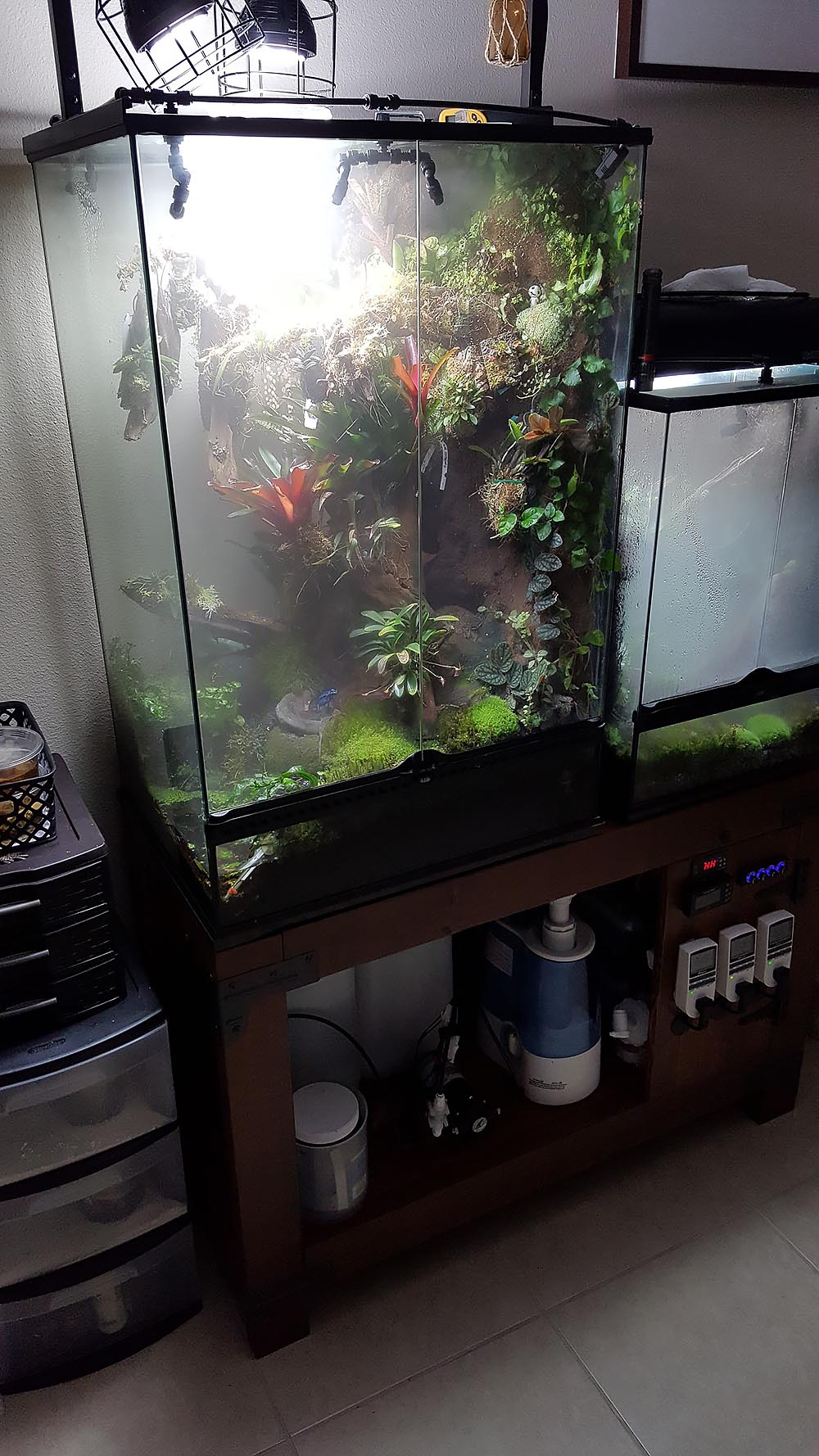 Shrouded in clouds: the main purpose of the cool-mist humidifiers is actually to cool the internal temperatures of the vivariums. Note the mister, humidifier, and various monitors and controls below the vivariums.