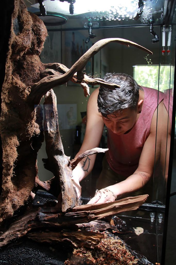 Dr. Adeljean Ho, seen here working on the construction of one of his office vivariums.