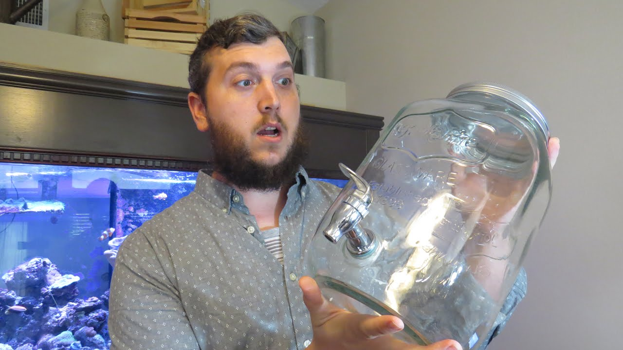 YouTuber Joey Jones of TheCoralReefTalk went all in on a mason jar reef in 2016. But things maybe haven't gone quite as planned...