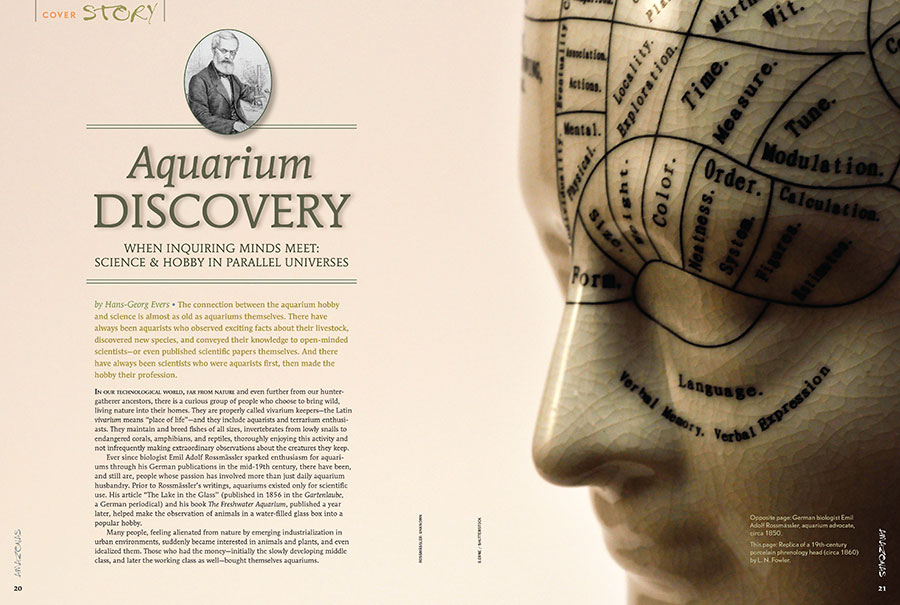 The connection between the aquarium hobby and science is almost as old as aquariums themselves. History is revealed in Aquarium Discovery by Hans Georg Evers.